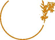Logo het veld
